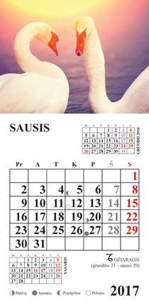 """2017 metų kalendorius su magnetu """"Gulbės"""""""