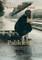 Palikimas. Britiškas romanas apie dvi seseris, paveldėtą dvarą ir šeimos paslaptį