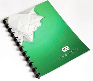 """Daugkartinio naudojimo sąsiuvinis """"ESQUOIA"""". Penklinė. Žalias (A4)"""