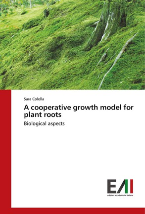 A cooperative growth model for plant roots