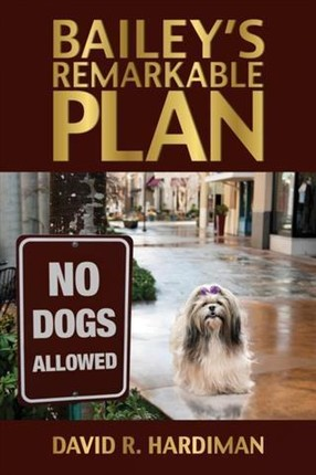 Bailey's Remarkable Plan