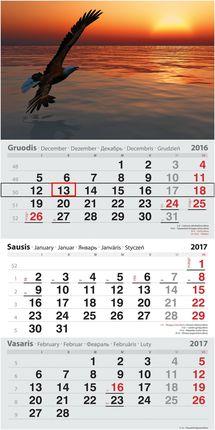 2017 metų kalendorius. Jūra