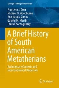A Brief History of South American Metatherians