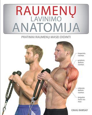 Raumenų lavinimo anatomija: pratimai raumenų masei didinti