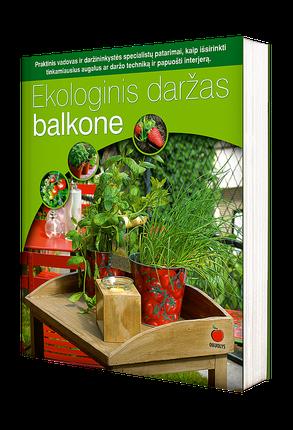 Užauginkite sveikas daržoves bet kokiame plote, net bute! Ekologinis daržas balkone