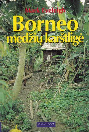 Borneo medžių karštligė