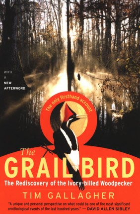 The Grail Bird
