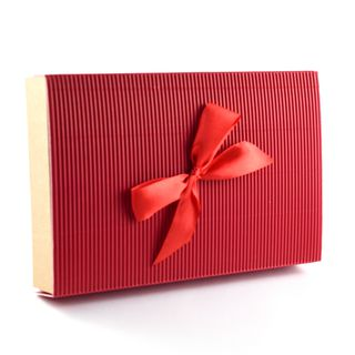Dėžutė knygoms (raudona, 16,5 x 25 x 4 cm)