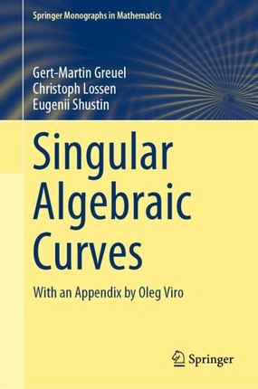 Singular Algebraic Curves