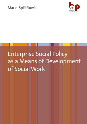 Enterprise Social Policy as a Means of Development of Social Work