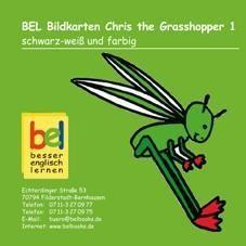 Learning English with Chris the Grashopper Bildkarten CD-ROM 1