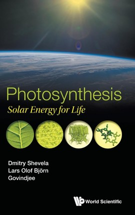 Photosynthesis: Solar Energy for Life