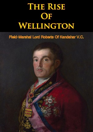 Rise Of Wellington