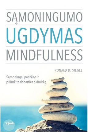 Sąmoningumo ugdymas. Mindfulness: sąmoningai patirkite ir priimkite dabarties akimirką