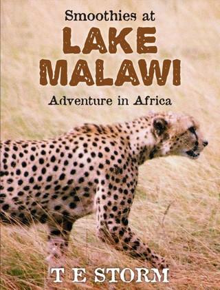Smoothies at Lake Malawi