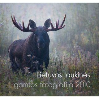 Lietuvos laukinės gamtos fotografija 2010