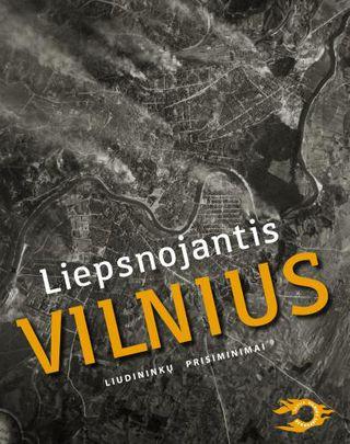 Liepsnojantis Vilnius. Liudininkų prisiminimai