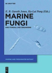 Marine Fungi