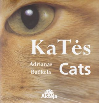 Katės. Cats