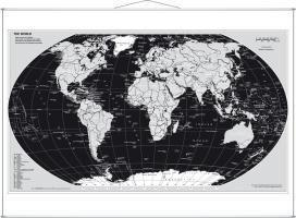 Weltkarte Silberedition. Wandkarte