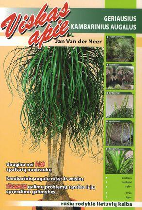 Viskas apie geriausius kambarinius augalus